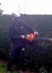 hertfordshire-tree-company-08